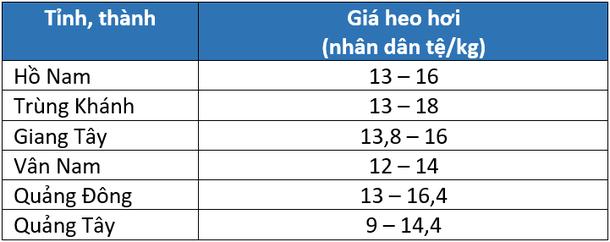Giá heo hơi Trung Quốc hôm nay 14/3: Sẽ tiếp tục giảm nhẹ trong ngắn hạn - Ảnh 2.