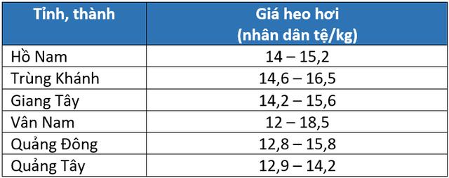Giá heo hơi Trung Quốc hôm nay 13/3: Đà tăng duy trì nhưng khả năng cao có sẽ có một đợt điều chỉnh - Ảnh 2.