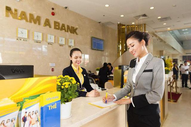 Nam A Bank úp mở việc tăng vốn, dự kiến lên sàn HOSE trong năm 2019 - Ảnh 1.