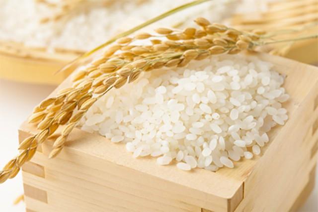 Ai Cập mời thầu quốc tế nhập khẩu gạo - Ảnh 1.