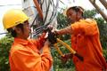 Tăng giá điện 8,36%, tác động thế nào đến đời sống, sản xuất?