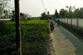 Tin tức Bất động sản ngày 7/3: 'Cò' ở Đà Nẵng tung tin lên quận để thối giá đất...