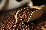 Giá cà phê hôm nay 12/3: Đi ngang trong khoảng 32.700 - 33.400 đồng/kg