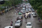 Chi gần 500 tỷ đồng sửa chữa, nâng cấp đường Nguyễn Hữu Cảnh TPHCM