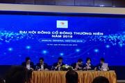 ĐHĐCĐ Văn Phú - Invest: Đặt chỉ tiêu doanh thu gấp gần 6,5 lần năm 2018, cổ đông chất vấn việc không hoàn thành kế hoạch kinh doanh