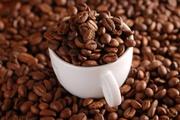 [Download] Báo cáo thị trường cà phê tháng 1/2019: Tín hiệu tích cực ngay từ đầu năm