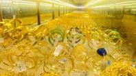 Giá vàng SJC rớt đến 2,6 triệu đồng/lượng, người mua lỗ hơn 3 triệu đồng trong tháng 11