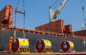 Hoa Sen ghi nhận doanh thu xuất khẩu kỷ lục 100 triệu USD/tháng