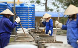 Để ngành sản xuất nước mắm truyền thống có động lực phát triển