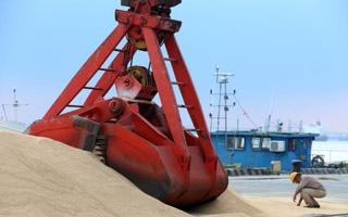 Giá đậu nành Trung Quốc bật tăng vì thời tiết lạnh đe dọa tới mùa màng